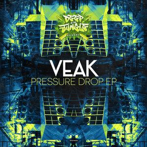 VEAK - Pressure Drop
