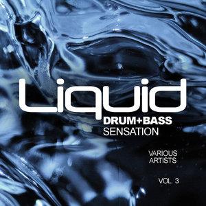 VARIOUS - Liquid Drum & Bass Sensation Vol 3