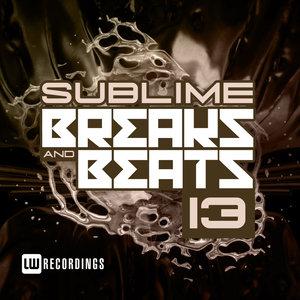 VARIOUS - Sublime Breaks & Beats Vol 13