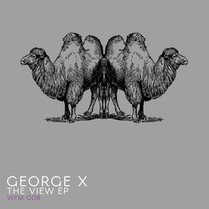 GEORGE X - The View