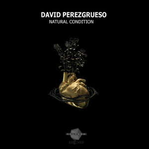 DAVID PEREZGRUESO - Natural Condition