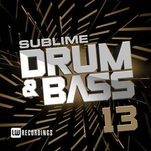 VARIOUS - Sublime Drum & Bass Vol 13