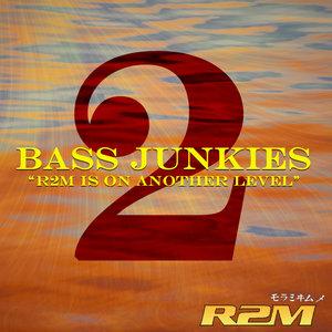 R2M - Bass Junkies Vol 2