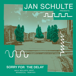 VARIOUS - Presents/Sorry For The Delay - Wolf Moller's Most Whimsical Remixes