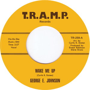 GEORGE E JOHNSON - Wake Me Up