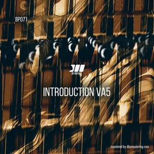 VARIOUS - Introduction VA#5