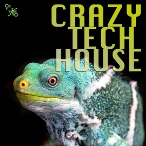 JASON RIVAS/MIKE IMPROVISA/THE MINIMAL PUPPETS/GLITCHDROPPER/KLUM BAUMGARTNER/ELEKTRONIK KITCHEN OF IDEAS - Crazy Tech House