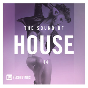 VARIOUS - The Sound Of House Vol 14