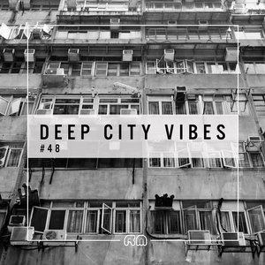 VARIOUS - Deep City Vibes Vol 48