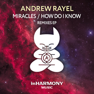 ANDREW RAYEL - Miracles/How Do I Know
