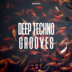 VARIOUS - Deep Techno Grooves