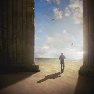 THE PARADISE REALS - Revolution