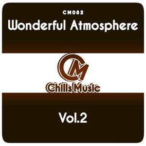 VARIOUS - Wonderful Atmosphere Vol 2