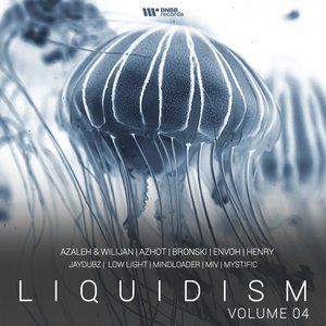 VARIOUS - Liquidism Vol 4