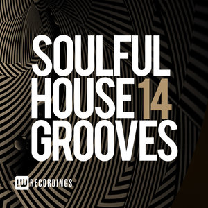 VARIOUS - Soulful House Grooves Vol 14
