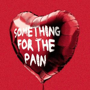 SHE DREW THE GUN - Something For The Pain