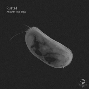 RUSTAL - Against The Wall
