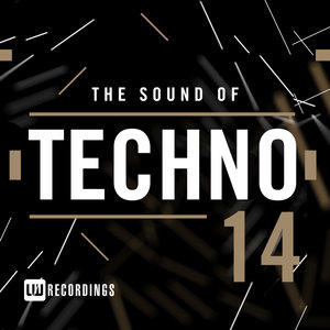 VARIOUS - The Sound Of Techno Vol 14
