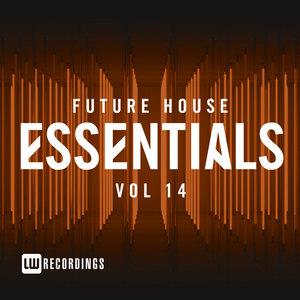 VARIOUS - Future House Essentials Vol 14