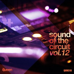VARIOUS - Sound Of The Circuit Vol 12