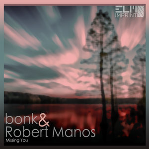 BONK feat ROBERT MANOS - Missing You