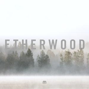 ETHERWOOD - In Stillness