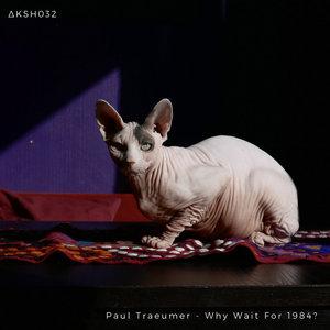 PAUL TRAEUMER - Why Wait For 1984?