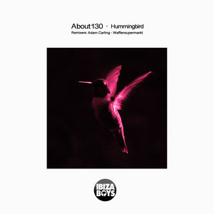 ABOUT130 - Hummingbird