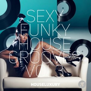 VARIOUS - Sexy Funky House Grooves Vol 3