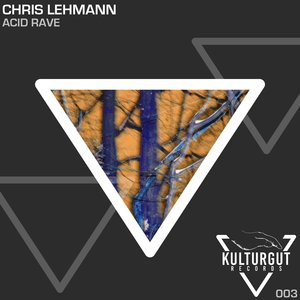 CHRIS LEHMANN - Acid Rave