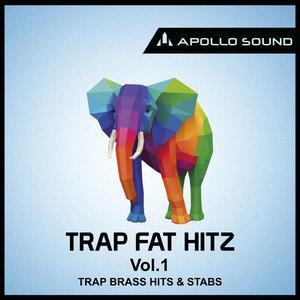 APOLLO SOUND - Trap Fat Hitz Vol 1: Brass Hits & Stabs (Sample Pack WAV)