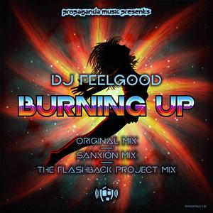 DJ FEELGOOD - BURNING UP