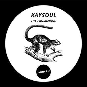 KAYSOUL - The Prosimians