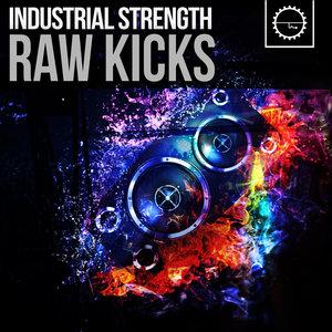 INDUSTRIAL STRENGTH RECORDS - Raw Kicks (Sample Pack Raw Kick Presets)