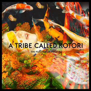 VARIOUS - A Tribe Called Kotori - Chapter 2