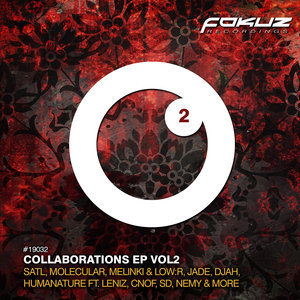 VARIOUS - Collaborations 2
