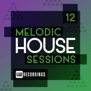 VARIOUS - Melodic House Sessions Vol 12