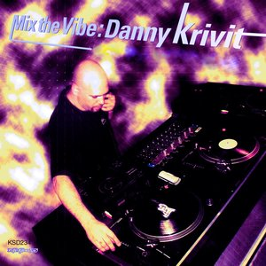 VARIOUS/DANNY KRIVIT - Mix The Vibe