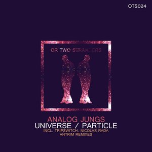ANALOG JUNGS - Universe/Particle