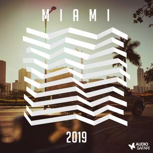 VARIOUS - Audio Safari Miami 2019