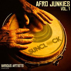 VARIOUS - Afro Junkies Vol 1