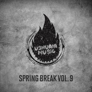 VARIOUS - Spring Break Vol 9