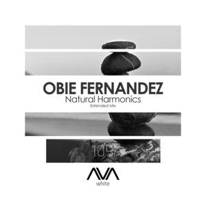 OBIE FERNANDEZ - Natural Harmonics