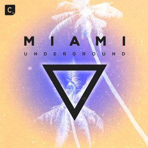 VARIOUS - Miami Underground 2019