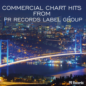 VARIOUS - Commercial Chart Hits From PR Records Label Group