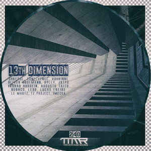 VARIOUS - 13Th Dimension