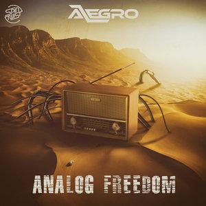 ALEGRO - Analog Freedom