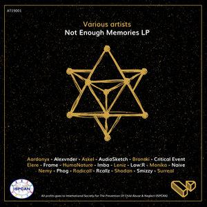 VARIOUS - Not Enough Memories LP