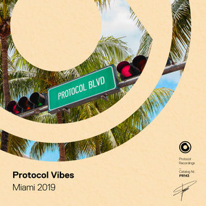 CHARLES B & VCTRY/NICKY ROMERO/MANTRASTIC/RECHLER/TIMMO HENDRIKS/LINDEQUIST/FUNKYBEAT - Protocol Vibes - Miami 2019 (Extended Mixes)