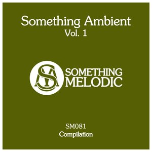 VARIOUS - Something Ambient Vol 1